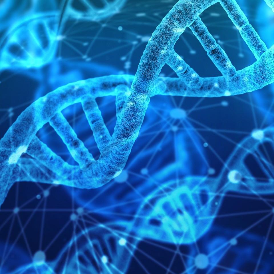 Biologia | Módulo 10 – Protozoários e Zoologia - Autenticus